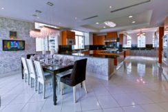 Panama Penthouse kitchen 3