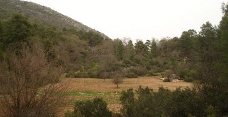 11.000 sm 5 star hotel building site for sale from owner