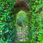 Secret-Garden-150x150