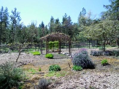 GardenArbor1