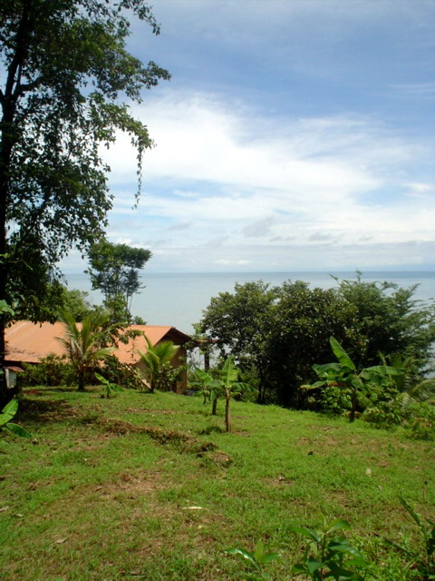 Costa Rica Bitcoin Real Estate 6