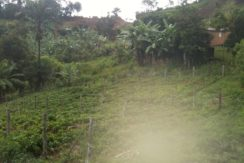 buy farm costa rica with Bitcoin