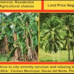 Carmen, Davao,Philippines land development buy with BitCoin