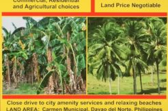 Carmen, Davao,Philippines land development buy with BitCoin