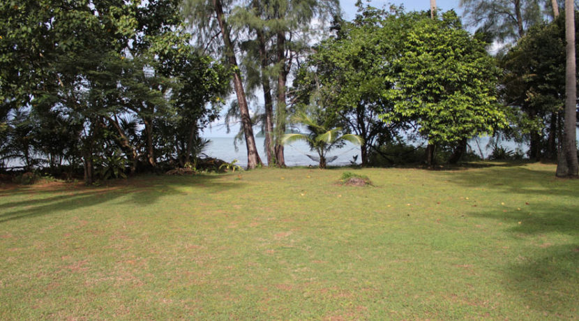Land Property for sell Krabi