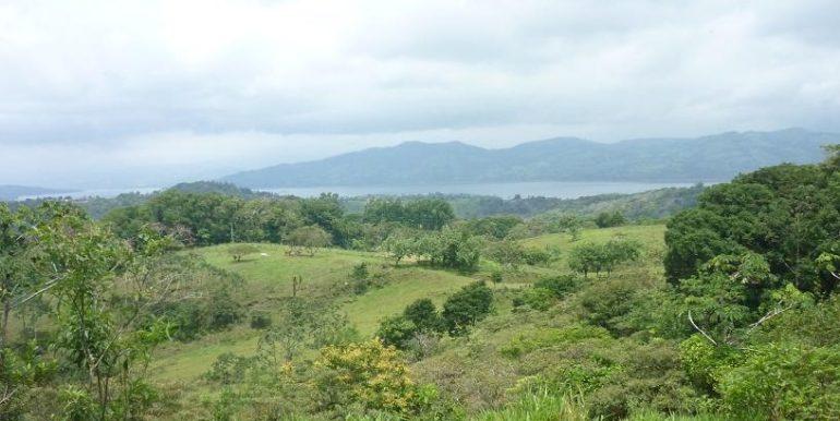 Arenal 7