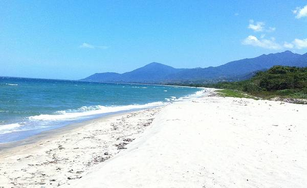 pristine 14 Acre Beachfront for Development 1000 Feet Of Beach, hotel, resort or homes