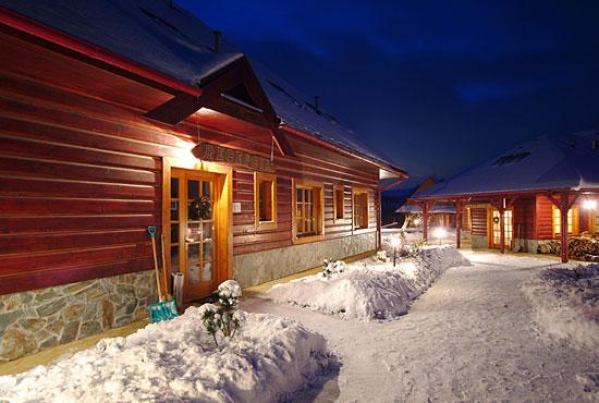sojka winter