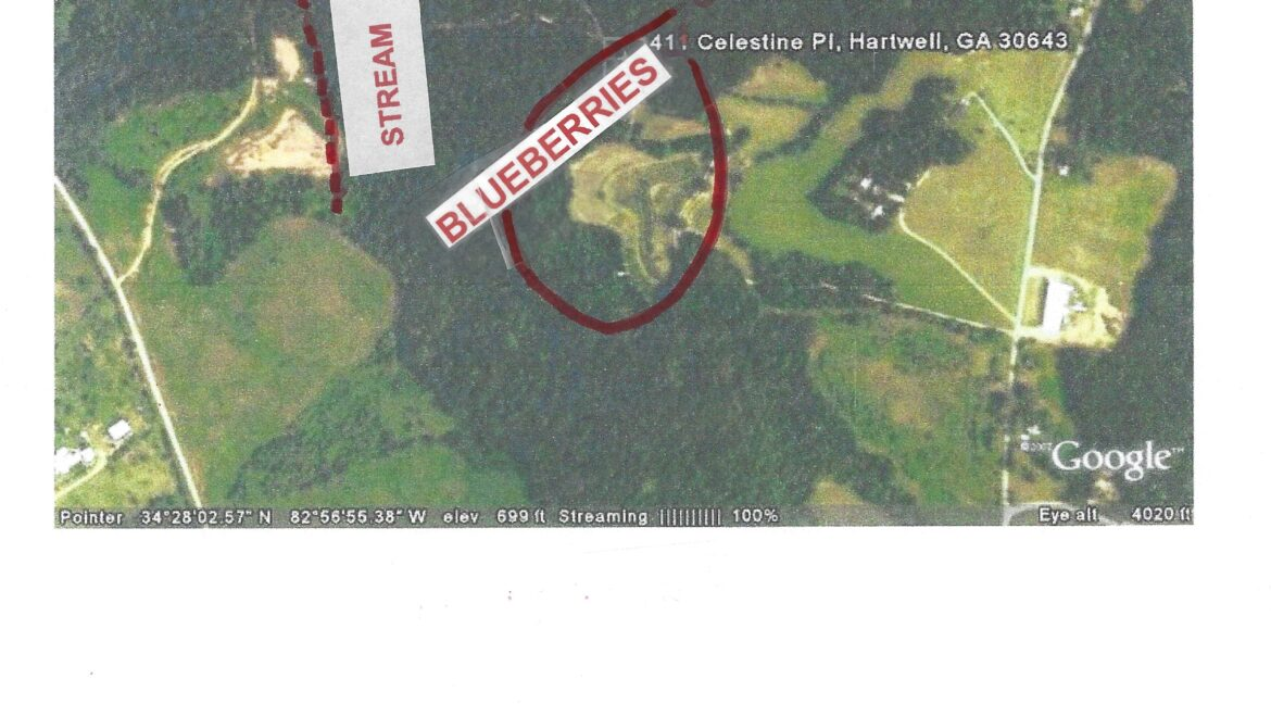 RM11 - LOCATION OF 3 ACRE BLUEBERRY FARM AREA - Page 11