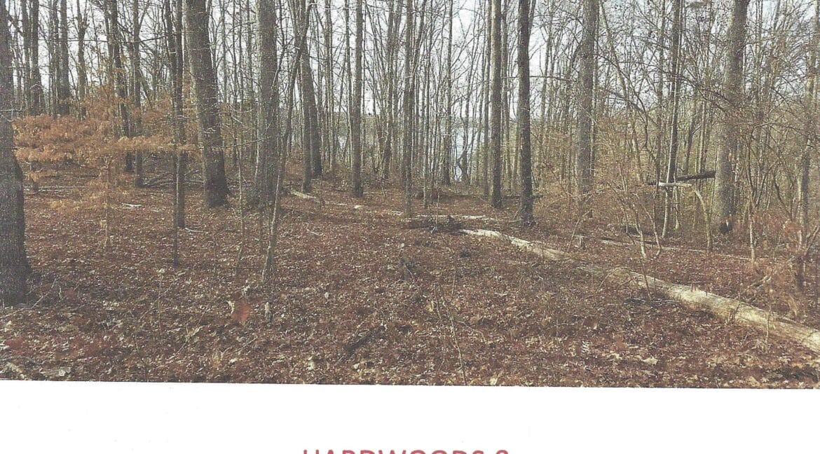 RM14 - HARDWOODS & LAKE HARTWELL - Page 14