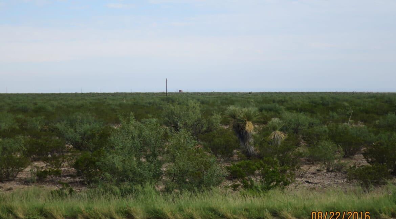 Deerfield Land