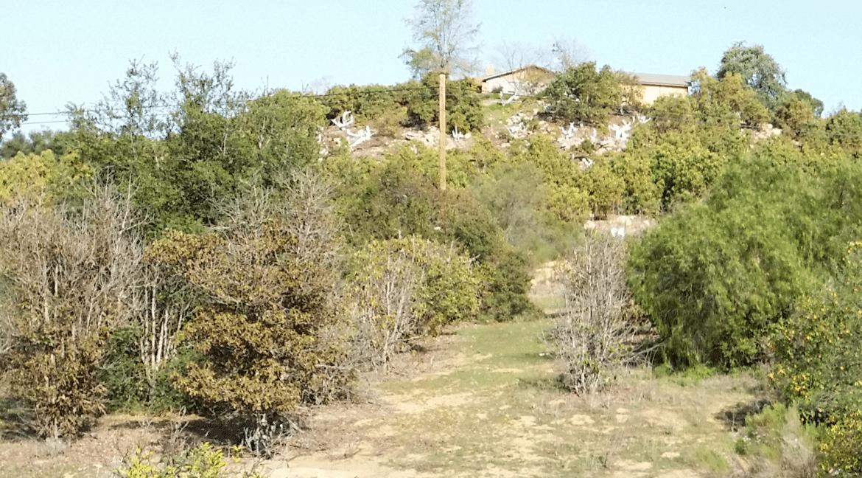 VC view